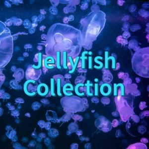 Jellyfish Collection